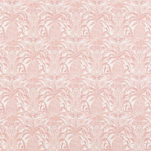 Bromelaid Flamingo