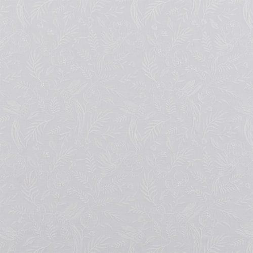 Daylily Dove Grey