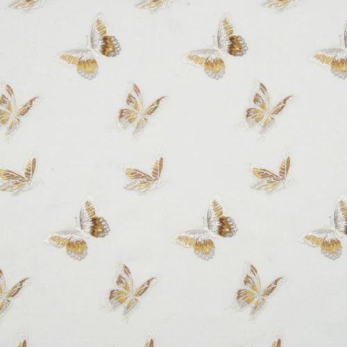 Flutter Dijon