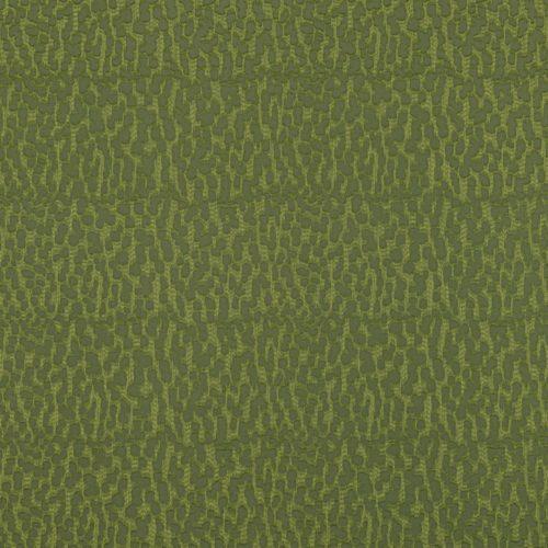 Java Rainforest